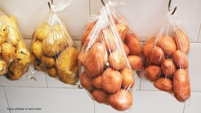 Cantina № 25 – Papas aliñadas (Kartoffeln in Vinaigrette) © Hans Keller