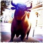 20130926_Bull ... (26.09.2013, Börse) Foto © Hans Keller
