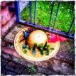 Lost My Hat... (23.05.2014, Nordend) Foto © Hans Keller