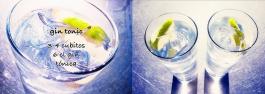 Gin tonic © Hans Keller